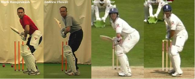 Cricket Batting 3