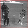 Cricket Bowling 250fps