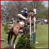 Equine - Cross Country