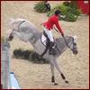 Equine - Landing